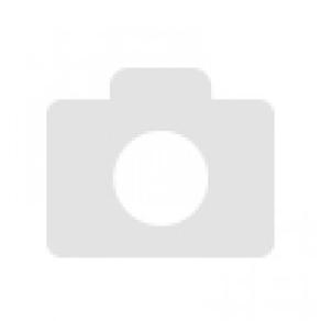 Cartone da 10 sacchettini the SNOWMAN